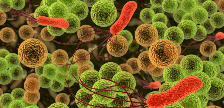 Long-term care pharmacy has a role in limiting clostridium difficile bacterial infections.
